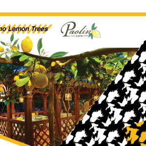 Paolino Lemon Trees at Casa WWTS 2018